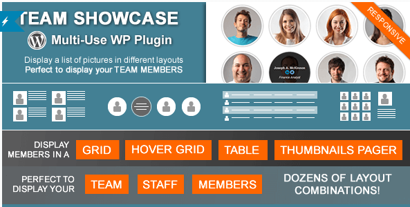 best WordPress team showcase plugin
