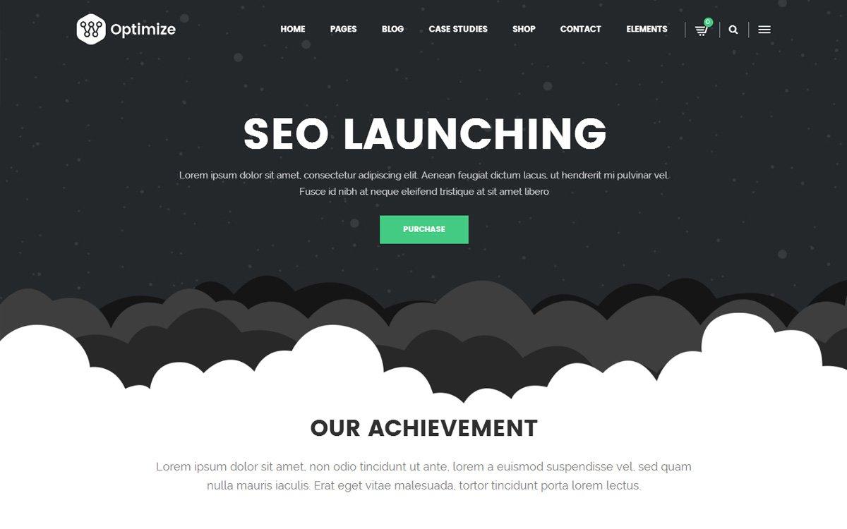 seo company WordPress Theme