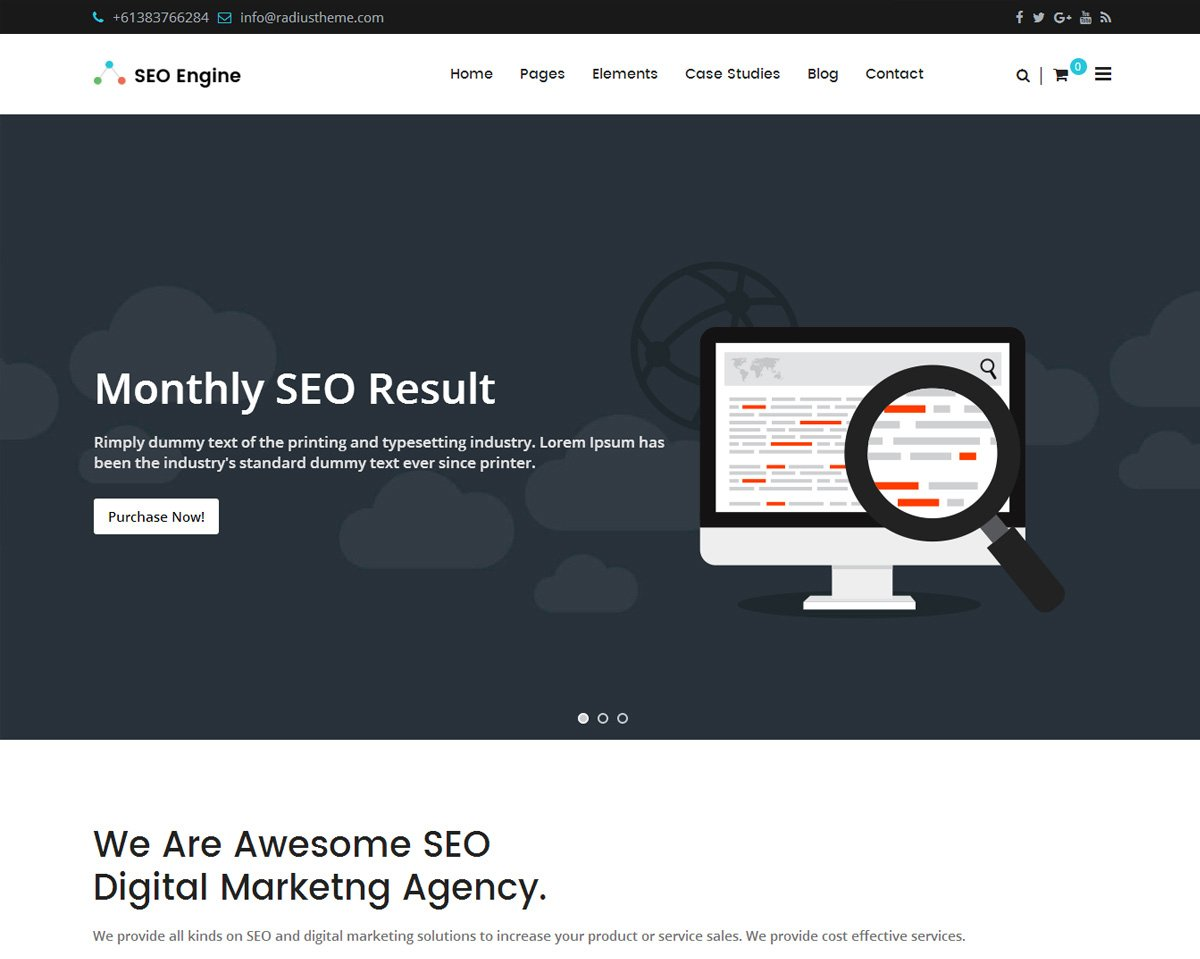 best WordPress theme for SEO company