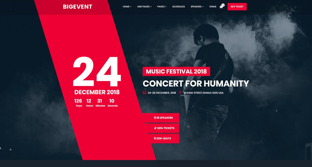 WordPress theme for event website