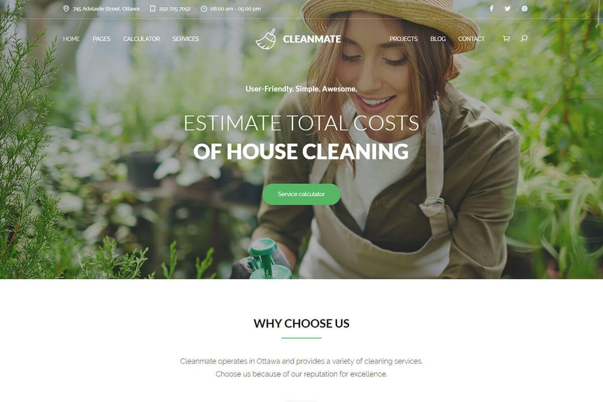Cleanmate WordPress Theme for cleaning company