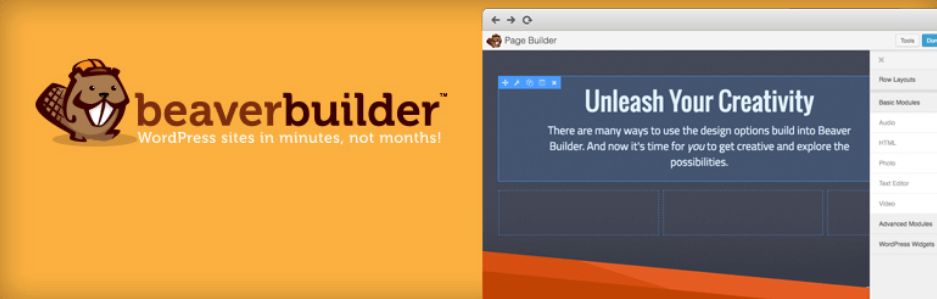 Beaverbuilder is one of the best WordPress page builder