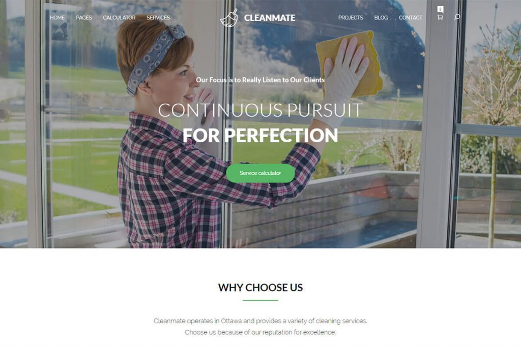 cleaning company website templates