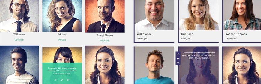Team Members Showcase wordpress plugins