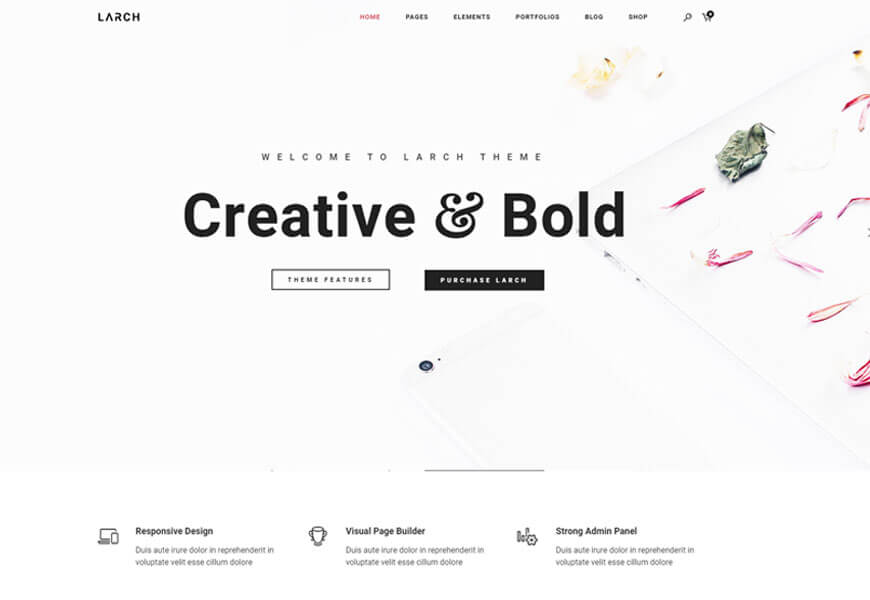 Larch is one of the best portfolio minimalist WordPress theme