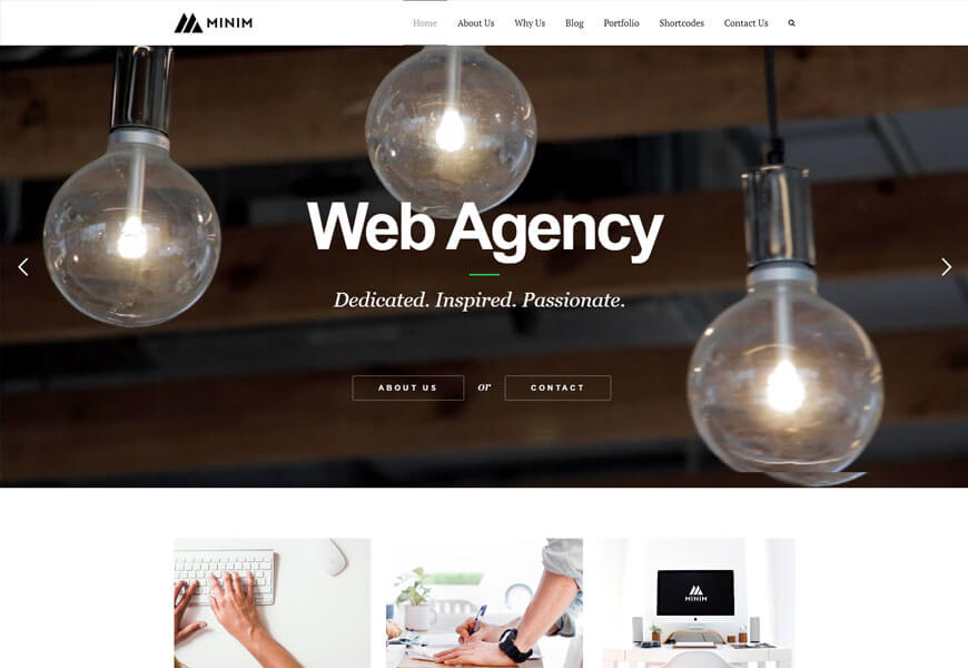 Minim is another beautiful minimalist WordPress theme