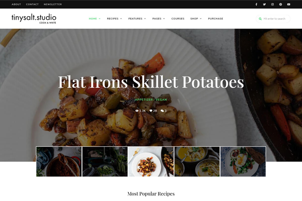 TinySalt is one of the best recipes WordPress theme