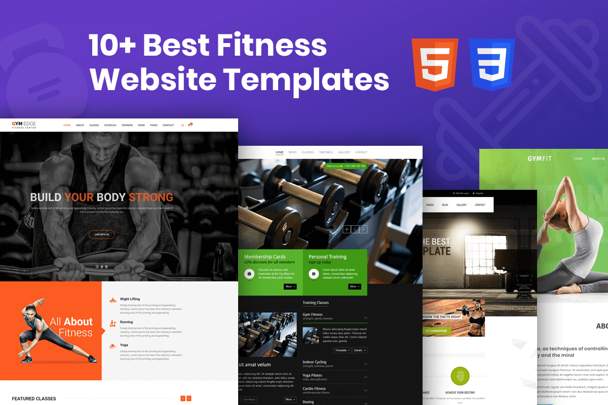 Best Fitness Website Templates