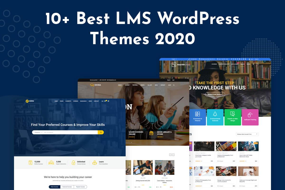 Best LMS wordpress theme