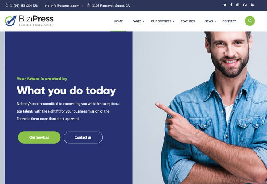 Bizipress is WordPress theme for insurance company