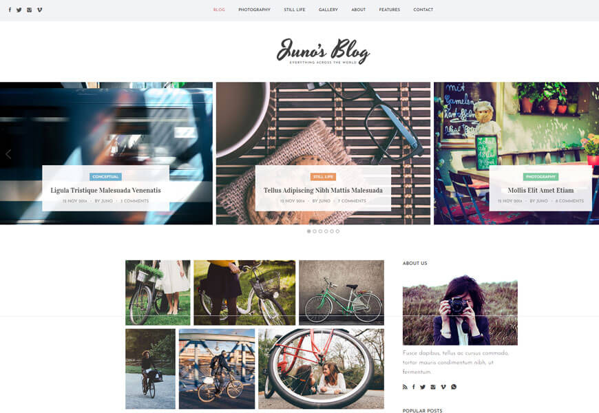 best website templates for photography website