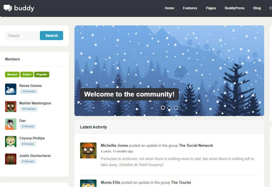 best buddypress wordpress theme