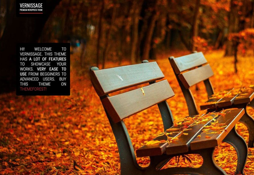 best photography WordPress theme