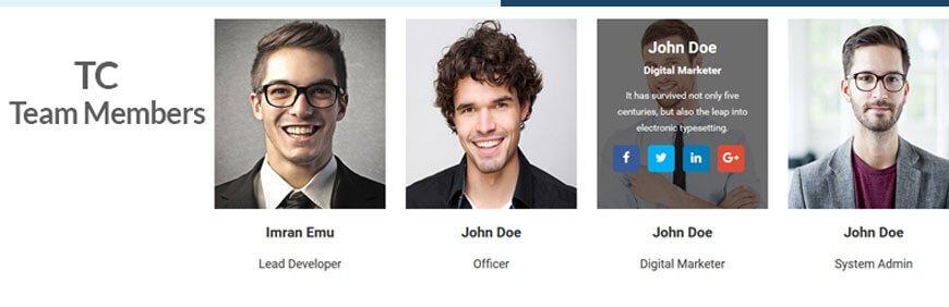 team members plugins WordPress