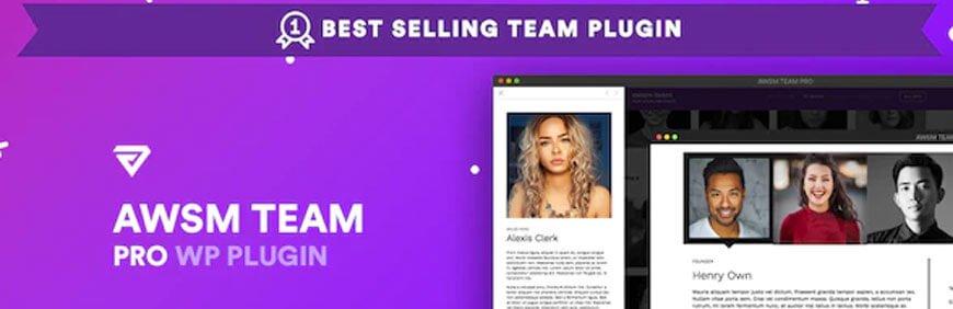 team pro plugins