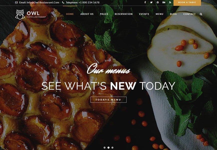 Owl - fast food restaurant website template