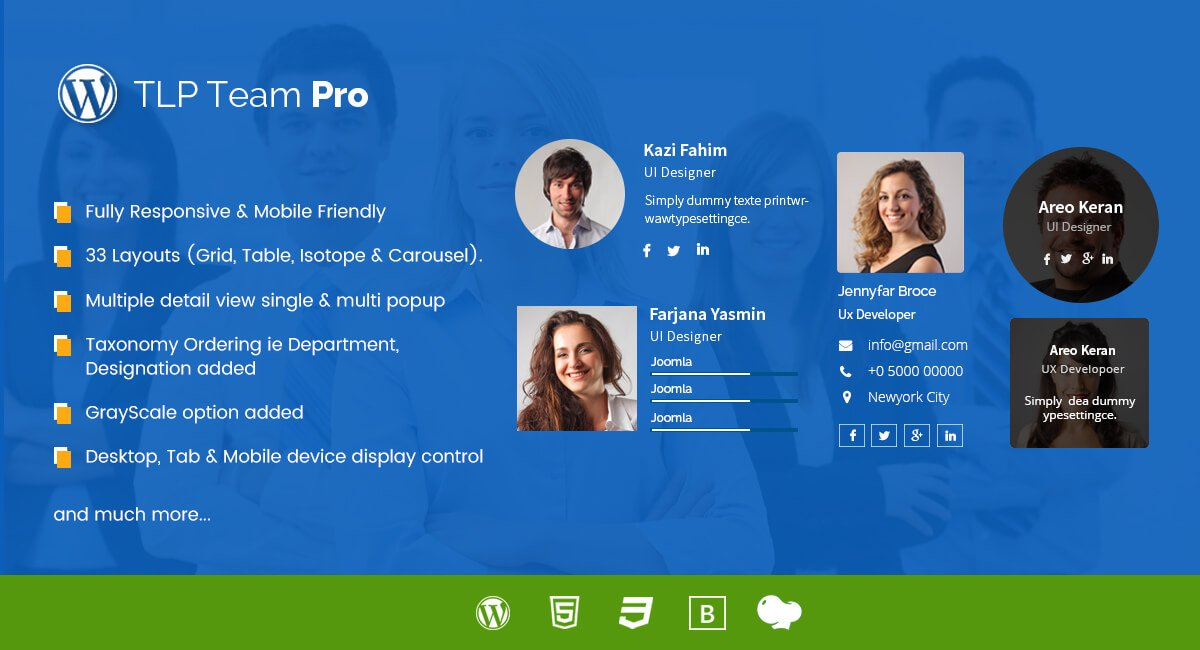 TLP Team Pro for WordPress